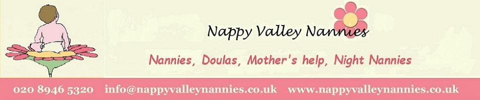 Nappy Valley Nannies Agency in South West London
